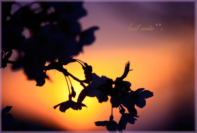 _MG_0538.jpg